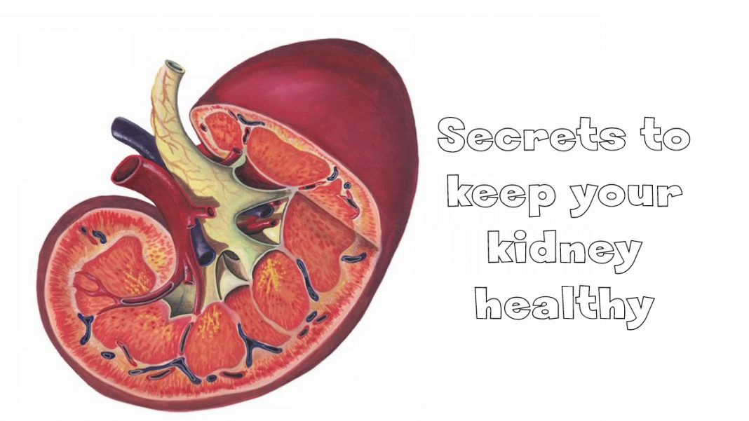 Secrets to keep your kidney healthy
