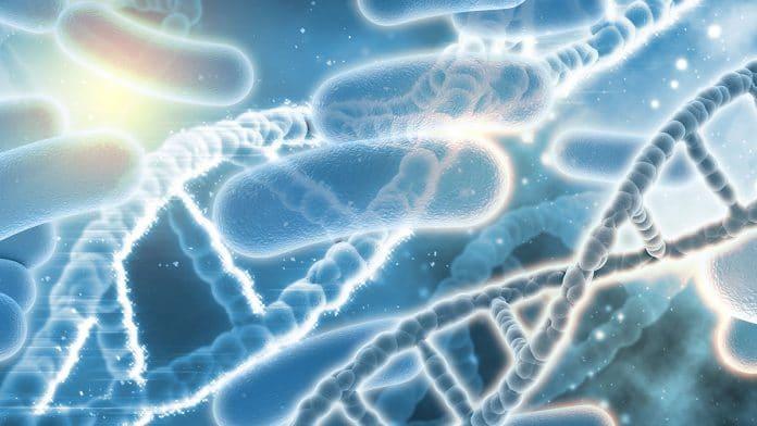 Microbes Cause Alzheimer's Disease