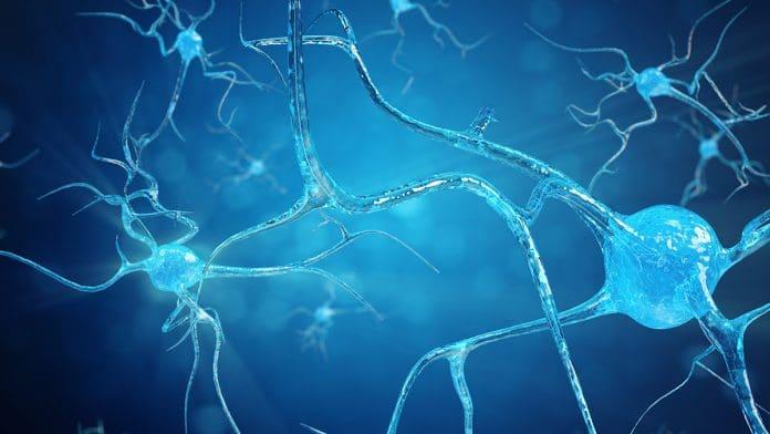 Forms Of Motor Neuron Disease