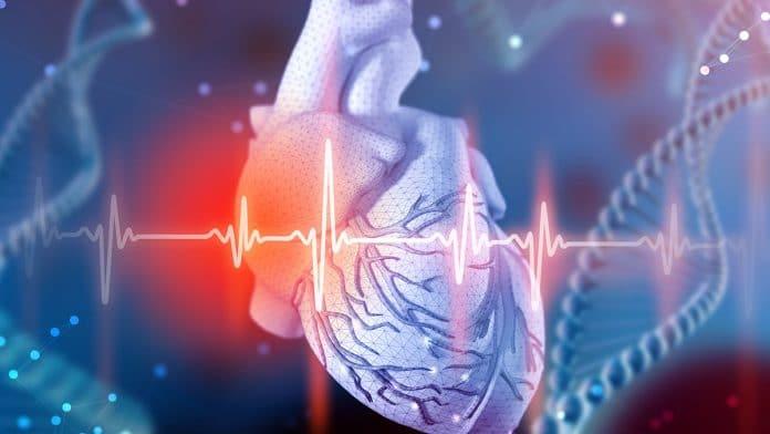Prevent Heart Attack