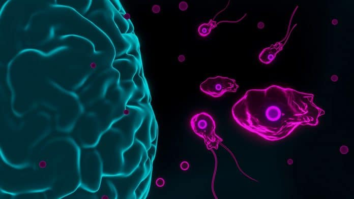 What is Naegleria Buzz?