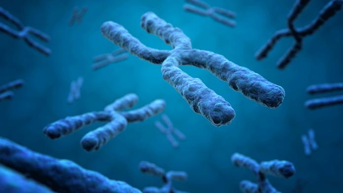 Gene Behind Our Sixth Sense