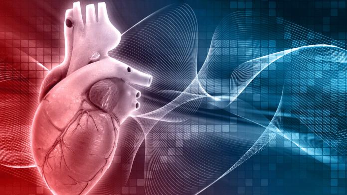 Ways To Improve Your Cardiovascular Health