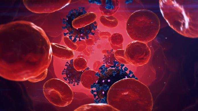 Immune-Boosting Nutrients